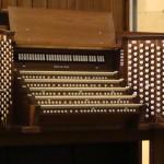 New Organ (50)
