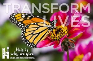 Stewardship15 Transform_social