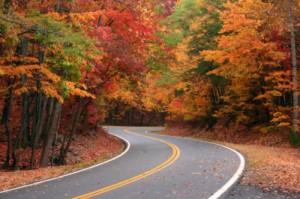 fall-foliage-2-800x600