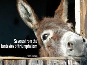 celebration donkey