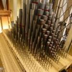 Blog organ pipes