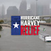 Hurricane Harvey Relief_SQ1