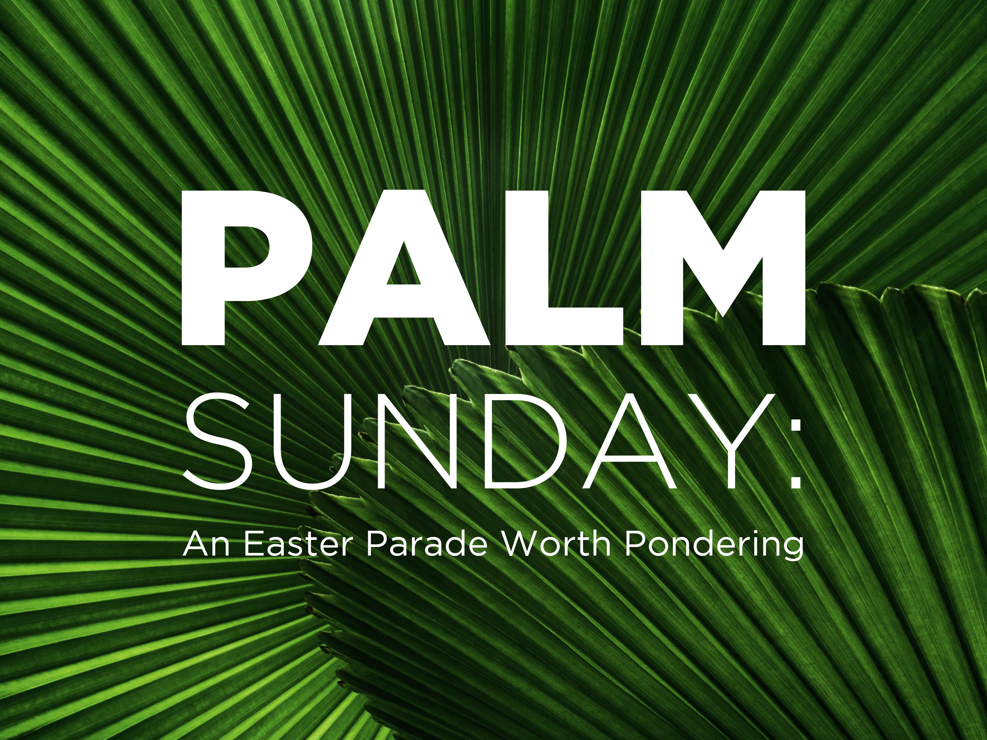 Palm Sunday Video Submissions