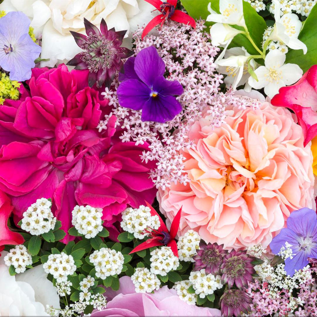 Sanctuary Flower Dates Available